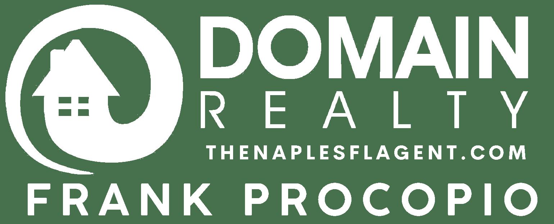 Domain Reality logo